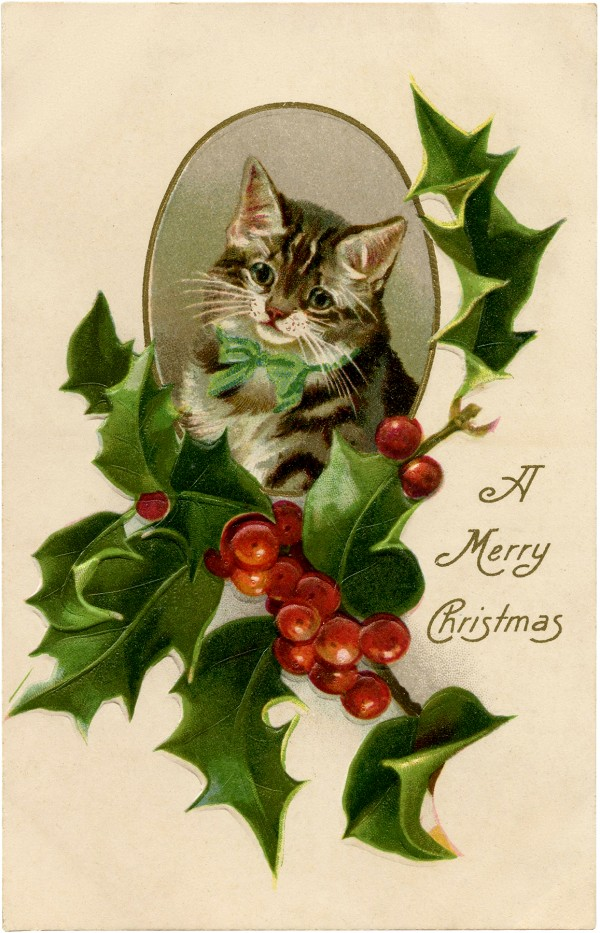 Christmas Day Greeting & Note Cards New Year Felidae Transparent Background PNG Clipart