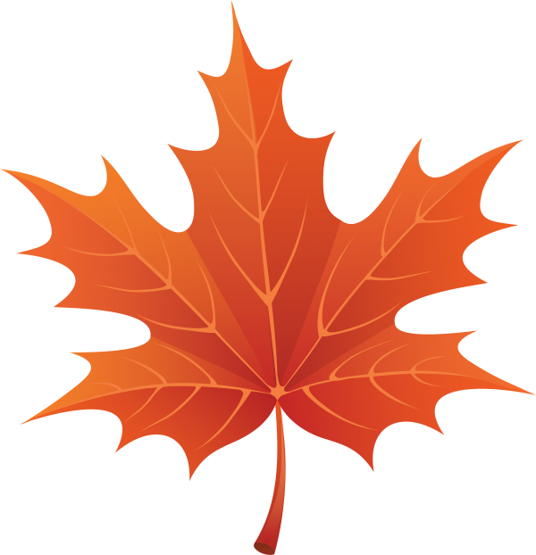 Cartoon Autumn Maple Leaf Maple Transparent Background PNG Clipart