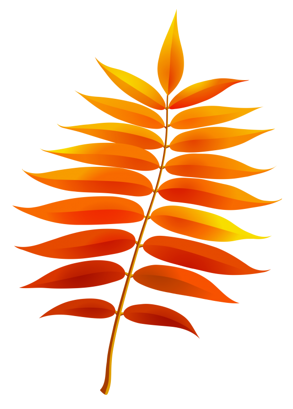 Leaf Computer Icons Autumn Leaf Color Heliconia Transparent Background PNG Clipart