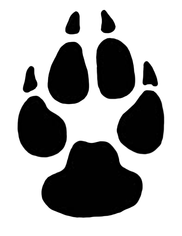 Animal Track Animal Cat Black-and-white Transparent Background PNG Clipart