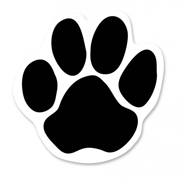 Cougar Paws Bear Computer Icons Paw Transparent Background PNG Clipart