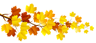 autumn, leaf, autumn leaf color, black maple transparent background PNG clipart thumbnail