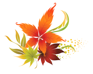 autumn leaf color, watercolor painting, autumn, botany - leaf transparent background PNG clipart thumbnail