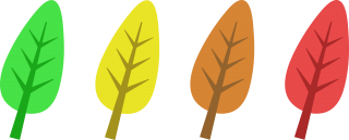 cartoon, autumn leaf color, open, tree transparent background PNG clipart thumbnail