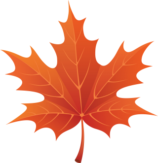 cartoon, autumn, maple leaf, maple transparent background PNG clipart thumbnail