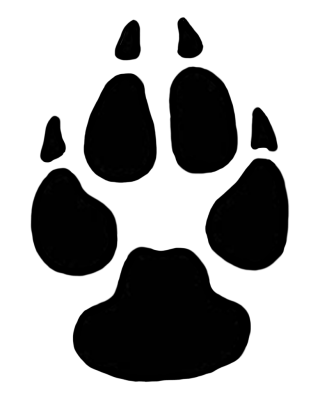 animal track, animal, cat, black-and-white - paw print transparent background PNG clipart thumbnail