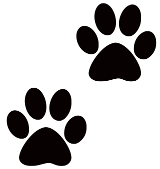 blog, cat, dog, snout - paw print transparent background PNG clipart thumbnail