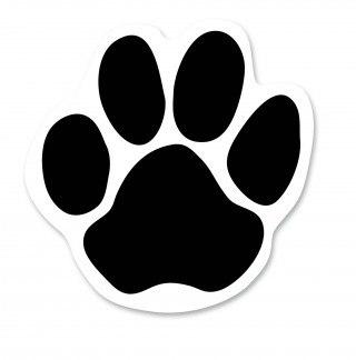 cougar paws, bear, computer icons, paw - paw print transparent background PNG clipart thumbnail