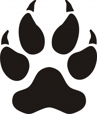 dog, cat, tiger, whiskers - paw print transparent background PNG clipart thumbnail